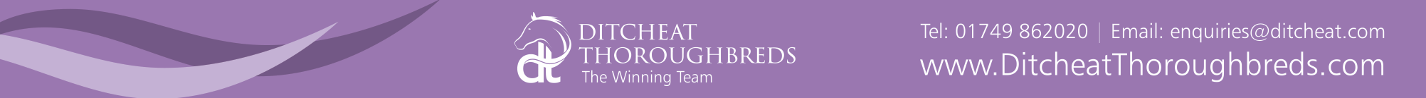 ditcheat_thoroughbreds