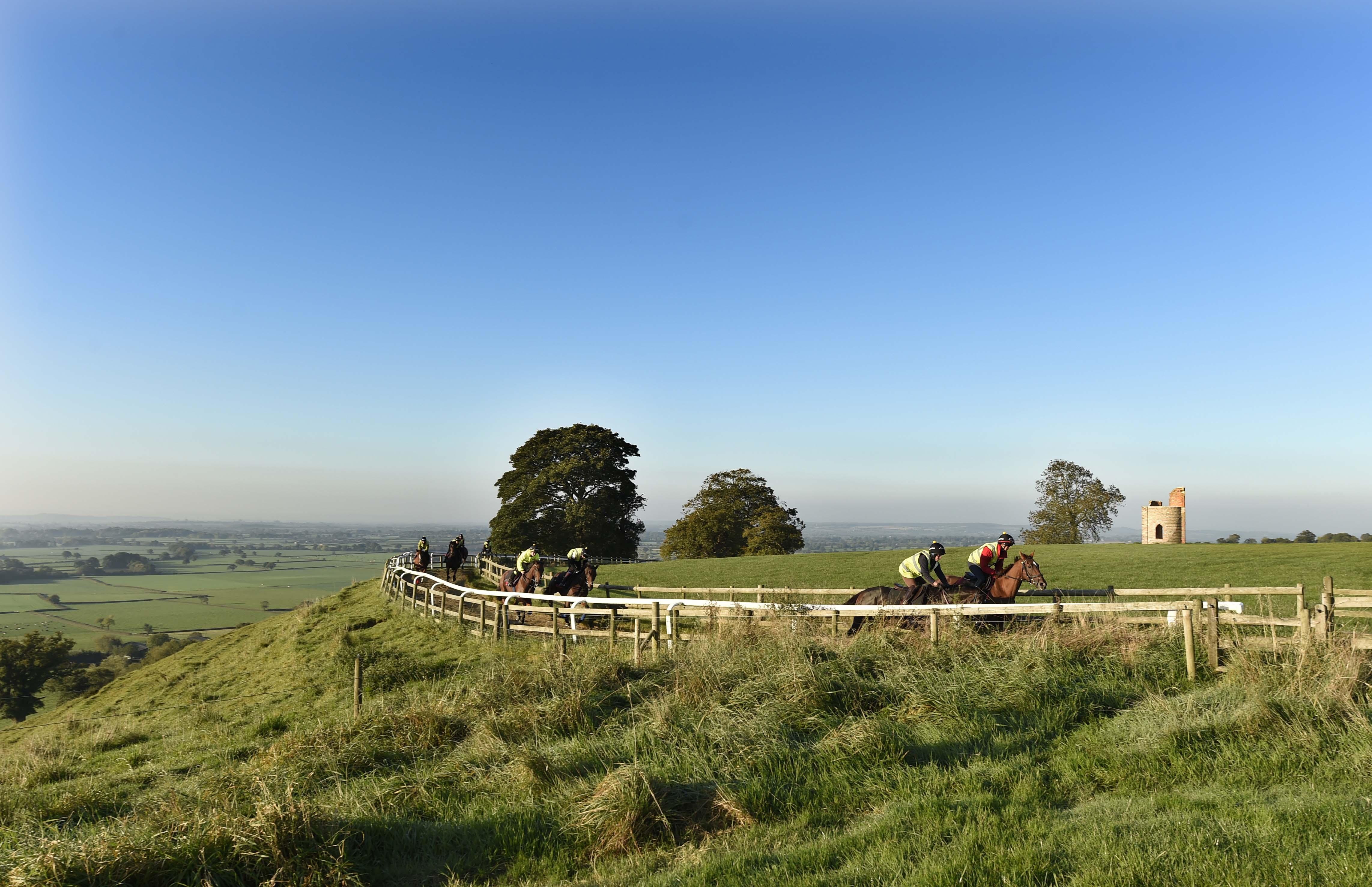 Ditcheat Hill Gallop