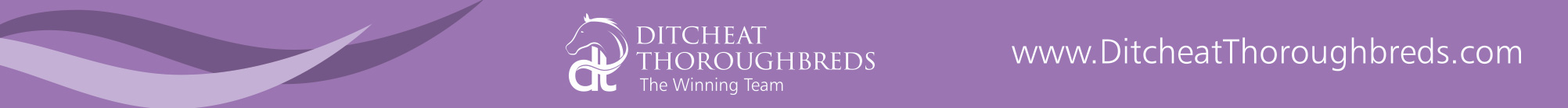 ditcheat-thoroughbreds